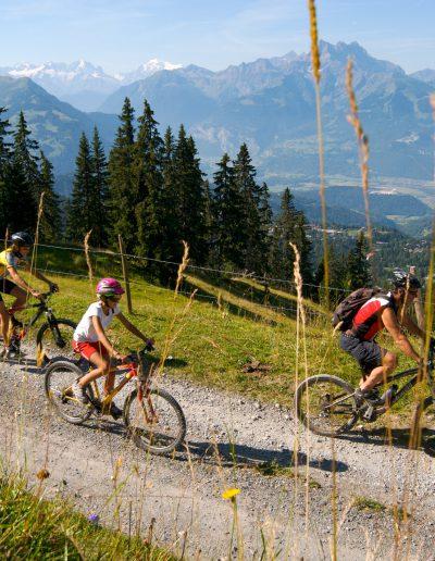 Tour des Alpes vaudoises Bike