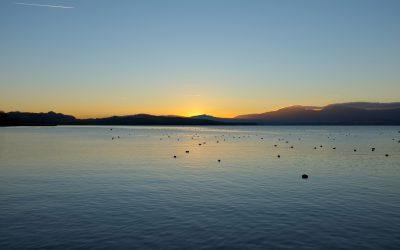 Terra Salina Lacustre