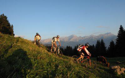 Tour des Alpes vaudoises VTT